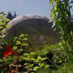 Dome-garden-garden
