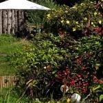 autumn-dome-garden