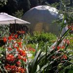 dome-garden-autumn-garden
